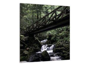 Obraz z černého lesa (V021686V4040)