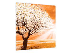 Oranžový obraz stromu (V020095V5050)