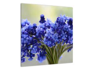 Obraz kytice modrých květů (V020175V5050)