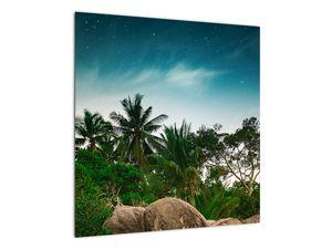 Tablou - palmierii (V020239V5050)