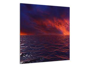 Obraz moře s ptáky (V020351V5050)