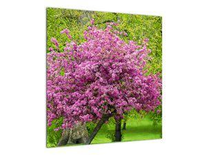 Obraz rozkvetlého stromu na louce (V020654V5050)
