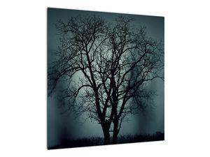Obraz stromu v zatmění (V020675V5050)