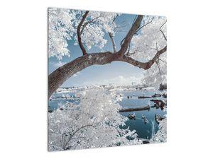Obraz zasněženého stromu u vody (V020718V5050)