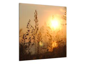 Obraz východu slunce (V020870V5050)