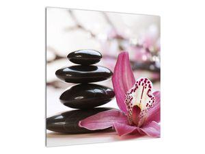 Obraz masážních kamenů a orchidee (V020910V5050)