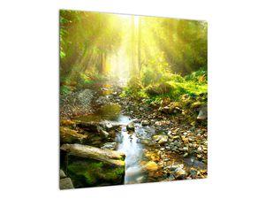 Obraz řeky v zeleném lese (V020942V5050)