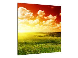 Obraz lúky so žiariacim slnkom (V021174V5050)