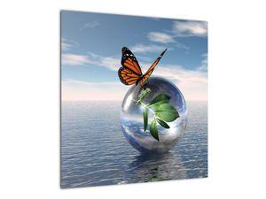 Obraz motýla na skleněné kouli (V021198V5050)