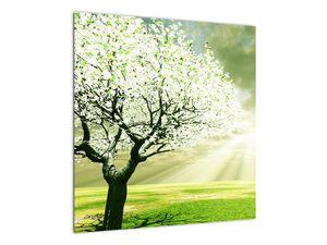 Obraz stromu na lúke (V021282V5050)
