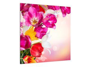 Obraz tulipánov (V021295V5050)
