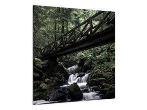Obraz z černého lesa (V021686V5050)