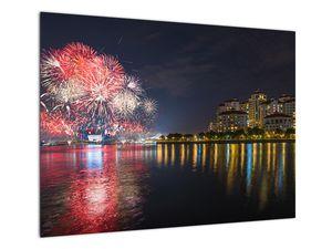 Tablou cu artificii in Singapur (V020035V7050)