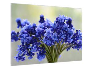 Obraz kytice modrých květů (V020175V7050)