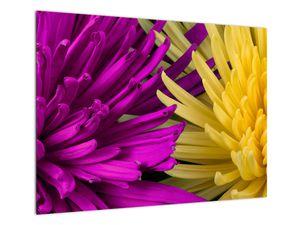 Tablou - detailu cu flori (V020201V7050)