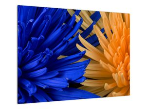 Tablou detailat cu flori (V020203V7050)
