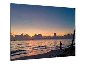Kép egy nőről a tengerparton (V020204V7050)