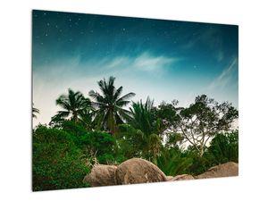 Tablou - palmierii (V020239V7050)