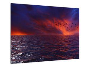 Obraz moře s ptáky (V020351V7050)