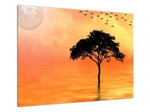 Obraz stromu v západu slunce (V020480V7050)