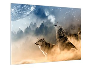 Obraz - vlci vyjící na měsíc (V020509V7050)