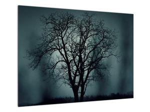 Obraz stromu v zatmění (V020675V7050)
