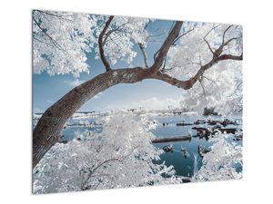 Obraz zasněženého stromu u vody (V020718V7050)