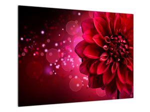 Piros virágok képe (V020807V7050)
