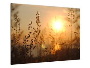 Obraz východu slunce (V020870V7050)