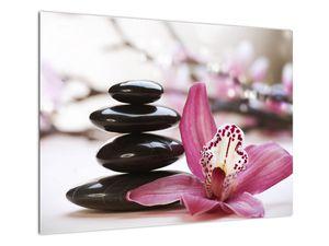 Obraz masážních kamenů a orchidee (V020910V7050)
