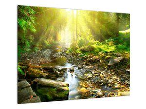 Obraz řeky v zeleném lese (V020942V7050)