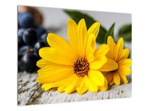 Obraz žluté květiny (V020952V7050)