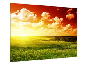 Obraz lúky so žiariacim slnkom (V021174V7050)