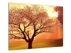 Obraz lúčov Boha (V021190V7050)