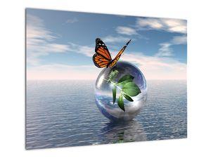 Obraz motýla na skleněné kouli (V021198V7050)