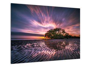 Slika plaže pri zalasku sunca (V021238V7050)