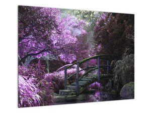 Obraz - Mystická zahrada (V021630V7050)