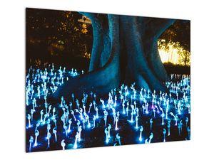 Obraz - Magický strom (V021631V7050)