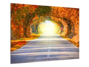 Obraz - Brána z korun stromů (V022002V7050)