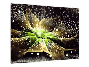 Obraz - Detail květu (V022045V7050)