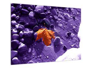 Obraz - Mořská pláž (V022053V7050)