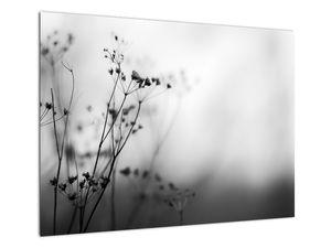 Kép - Réti virágok részlete (V022197V7050)