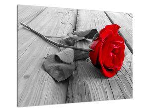 Slika rdeče vrtnice (V022288V7050)