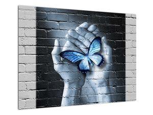 Obraz - Motýl na zdi (V022520V7050)