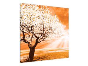 Oranžový obraz stromu (V020095V7070)