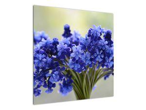 Obraz kytice modrých květů (V020175V7070)