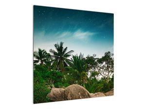 Tablou - palmierii (V020239V7070)