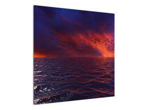 Obraz moře s ptáky (V020351V7070)