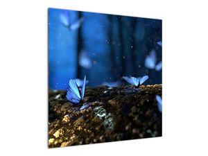 Obraz modrých motýlů (V020434V7070)