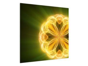 Obraz žluté květiny (V020451V7070)